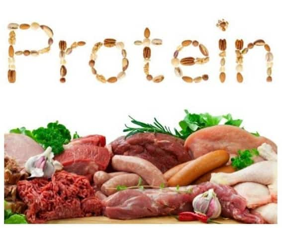High Protein Foods, benefits and protein deficiency