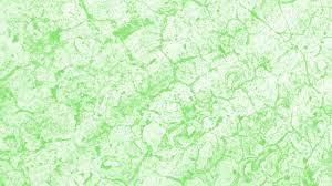 light green strip wallpaper.